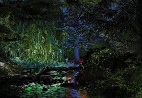 2019 09 21 Albert Kahn jardinsjardins-TLM