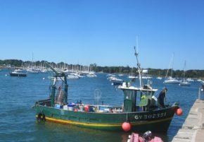 bateau pêche TLM aquarium