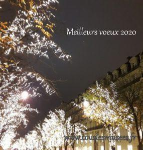 2019-12-25 181651-illuminations-Paris-meilleurs voeux TLM
